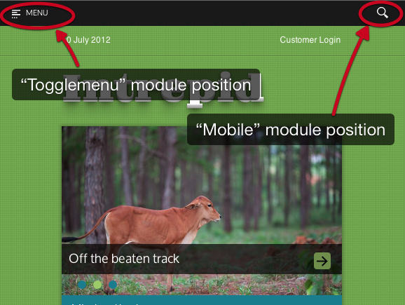 Mobile+view.png