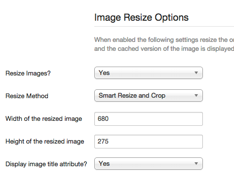 Image resize options
